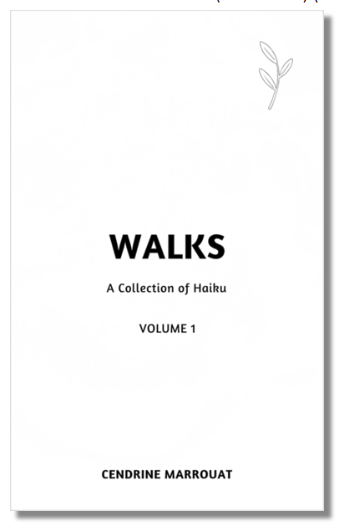 cover_Walks-hailu collection